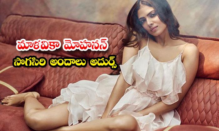 Actress Malavika Mohanan Gorgeous Images-మాళవికా మోహనన్ సొగసిరి అందాలు అదుర్స్