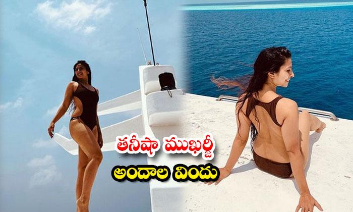 Actress Tanishaa Mukerji glamorous and spicy images-తనీషా ముఖర్జీ అందాల విందు