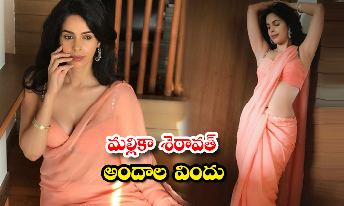 Atress Mallika Sherawat awesome clicks-మల్లికా శెరావత్ అందాల విందు