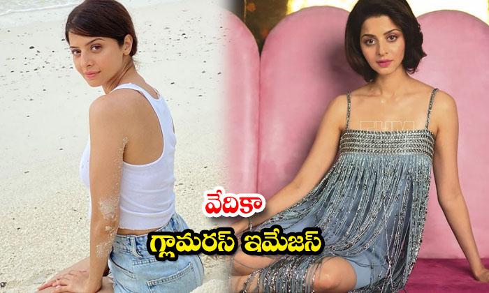 Beautiful Actress Vedhika Awesome Stills-వేదిక గ్లామరస్ ఇమేజస్