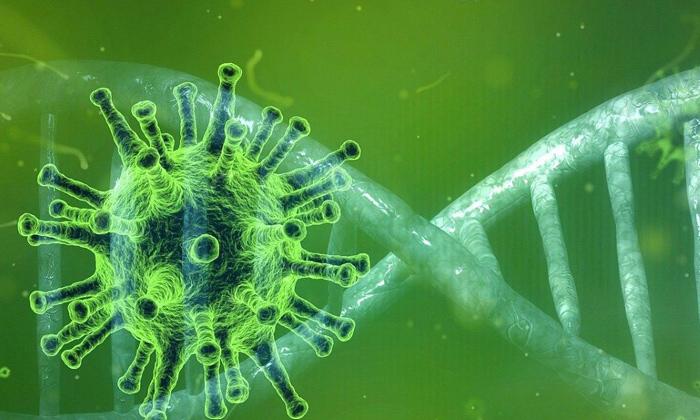 Telugu Bharat Pharmacy, Corona, Covid Vaccine, Covishield, Frontline Warriors, India\\'s Covid Vaccine Rollout Rescued The World: Top Us Scientist, Us Scientists-Telugu NRI