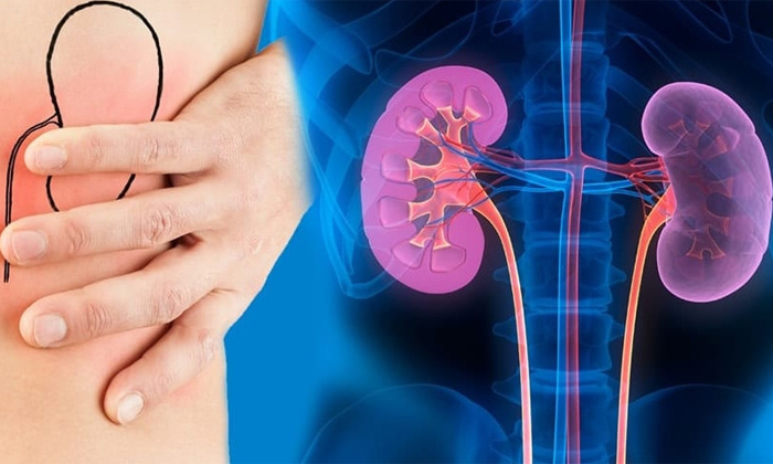 Diseases Caused By High Levels Of Vitamin D In Body-విటమిన్ డి ఎక్కువైతే.. ఆ జబ్బుల బారిన పడటం ఖాయం-Latest News - Telugu-Telugu Tollywood Photo Image-TeluguStop.com