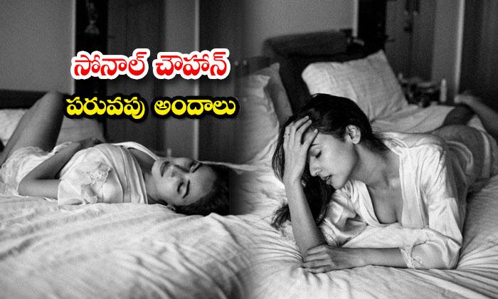 Glamorous Photos of Sensation Actress Sonal Chauhan-సోనాల్ చౌహాన్ పరువపు అందాలు