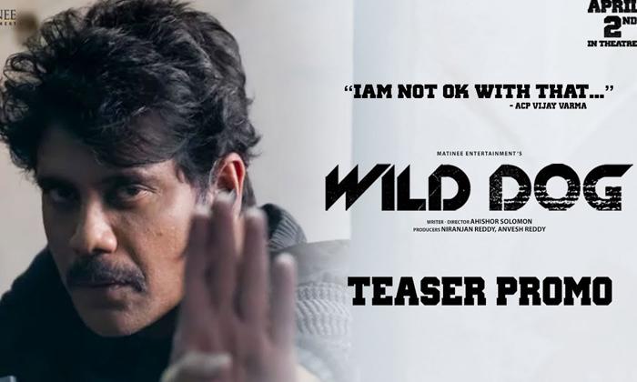 New Trailer: Nagarjuna Says I'm Not Ok With That-Latest News English-Telugu Tollywood Photo Image-TeluguStop.com