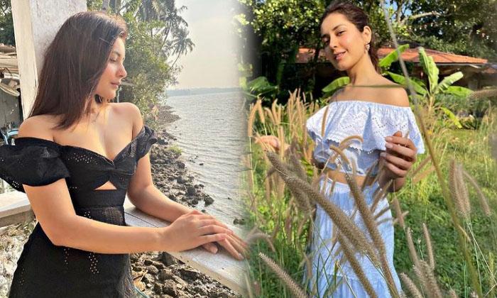Telugu Actress Raashi Khanna Latest Images-telugu Actress Hot Photos Telugu Actress Raashi Khanna Latest Images - Movie High Resolution Photo