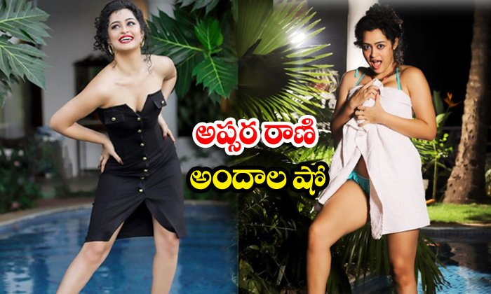 Tollywood hot actress apsara rani trendy clicks-అప్సర రాణి అందాల షో