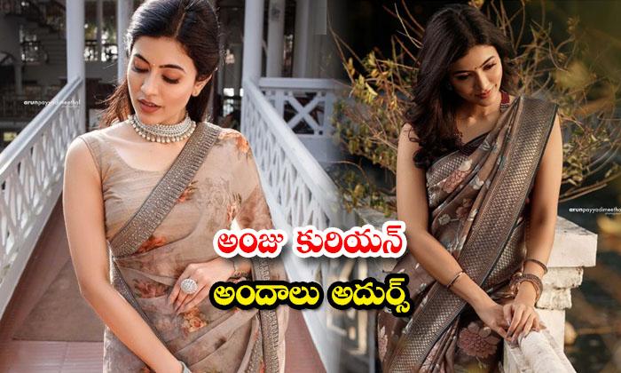 Viral pictures for actress Anju Kurian saree Images-అంజు కురియన్ అందాలు అదుర్స్