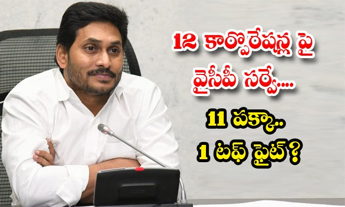 Ycp Survey On 12 Corporations 11 Will Win Definitely 1 Tough Fight-TeluguStop.com