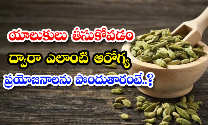 Health Benefits Of Cardamom-TeluguStop.com