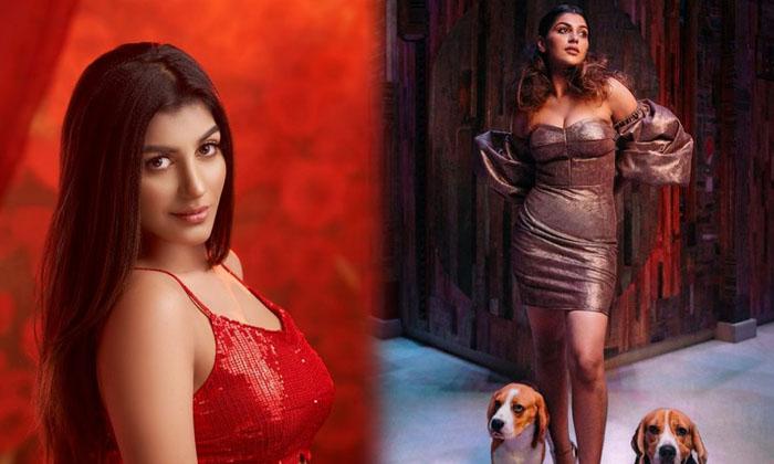 Yashika Aannand Red Dress Glamorous Images-telugu Actress Hot Photos Yashika Aannand Red Dress Glamorous Images - Telugu High Resolution Photo