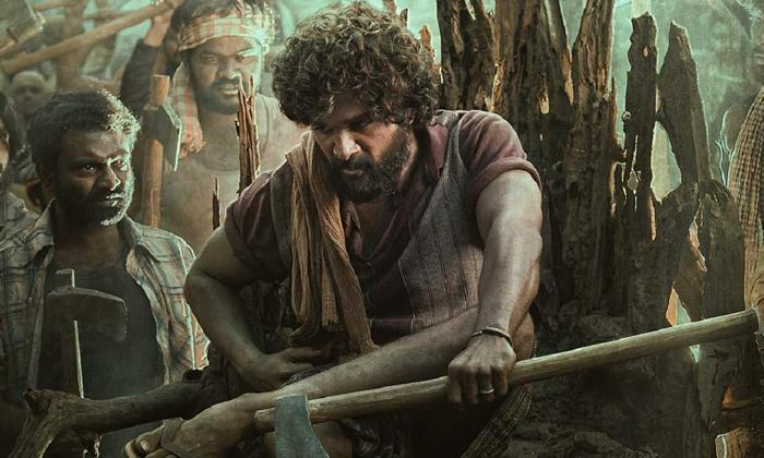 Allu Arjun And Sukumar Pushpa Movie Teaser Update-పుష్ప' కోసం మూడు నాలుగు టీజర్ లు రెడీ అవుతున్నాయట-Latest News - Telugu-Telugu Tollywood Photo Image-TeluguStop.com