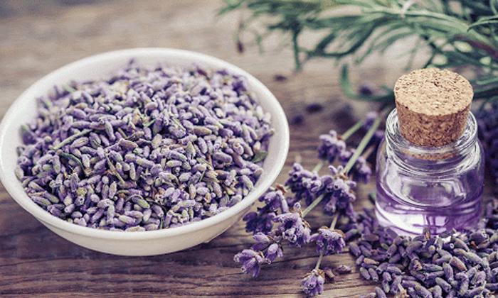 Beauty Benefits Of Lavender Oil-TeluguStop.com