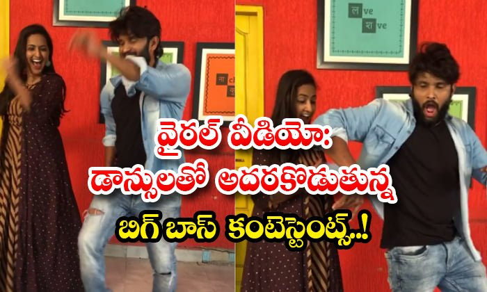 Bigg Boss Contestants Energetic Dance Video Viral-TeluguStop.com