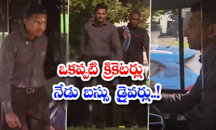 Former Cricketers Are Now Bus Drivers-TeluguStop.com