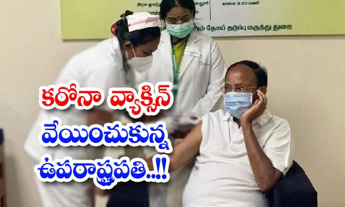 Vice President Frys Corona Vaccine-TeluguStop.com