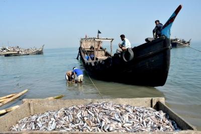 Cmfri Develops Hatchery Technology For High-value Marine Fish-TeluguStop.com