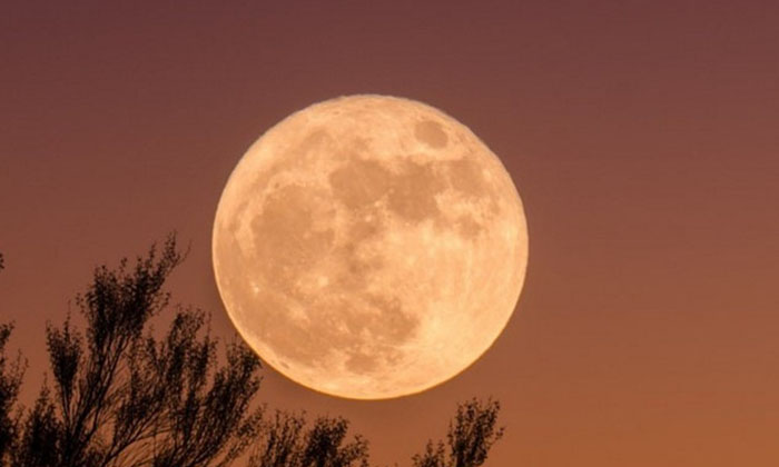 If You Want To Get Rid Of Financial Difficulties What If This Offering Is Offered To The Moon Till The Full Moon-TeluguStop.com