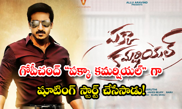 Hero Gopichand Pakka Commercial Movie Shooting Started From Today-TeluguStop.com