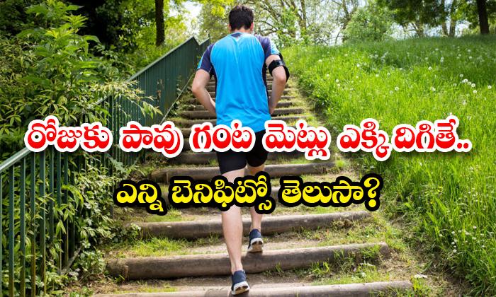Health Benefits Of Climb On Steps Everyday-TeluguStop.com