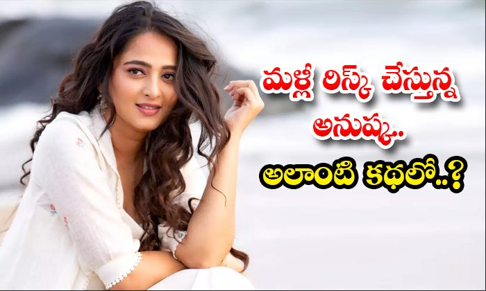 Anushka Fans Worried About Her Next Movie Story Rumours-TeluguStop.com