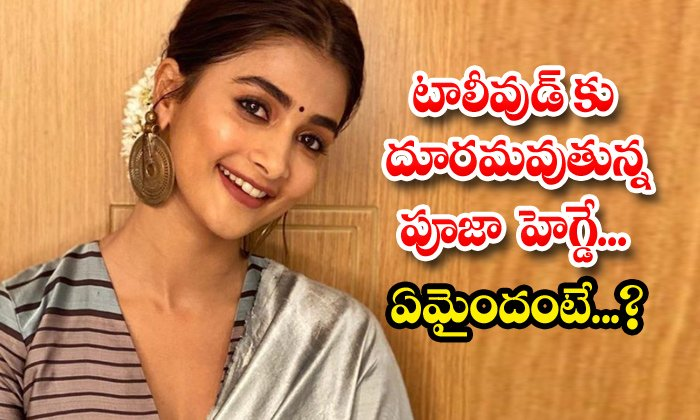 Rumours Goes Viral About Tollywood Star Heroine Pooja Hegde-TeluguStop.com