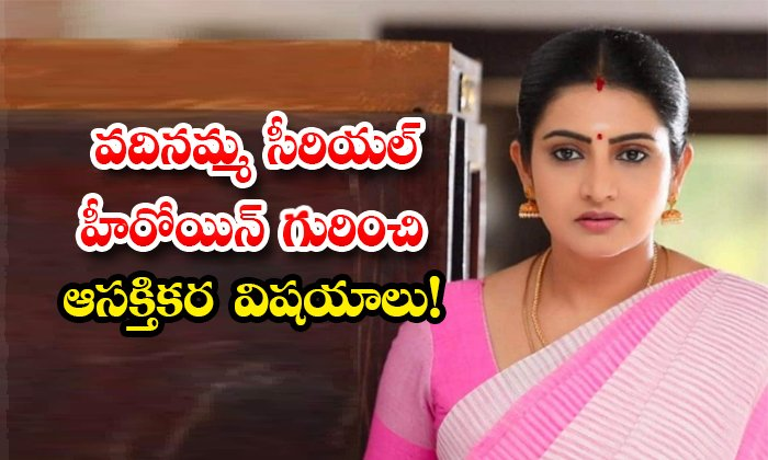 Vadinamma Serial Actress Sujitha Dhanush Know Details About Her-TeluguStop.com