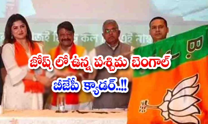 West Bengal Bjp Cadre In Josh-TeluguStop.com