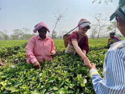 Why Tea Garden Workers Are Crucial In Bengal, Assam Polls?-TeluguStop.com