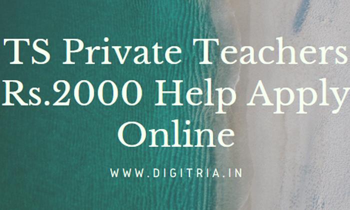 If Private Teachers Do This For 2 Thousand-ప్రైవేట్ టీచర్లు 2 వేల కోసం ఇలా చేస్తే సరి..-General-Telugu-Telugu Tollywood Photo Image-TeluguStop.com