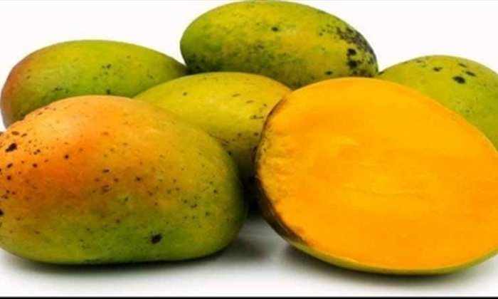 Are Mangoes Naturally Ripe Otherwise Artificially Ripe Fruit How To Find Out-మామిడి పండ్లు సహజసిద్ధంగా మాగిన పండ్లా.. లేకపోతే కృత్రిమంగా మాగిన పండ్లా.. ఎలా కనుక్కోవాలంటే-Telugu Health-Telugu Tollywood Photo Image-TeluguStop.com