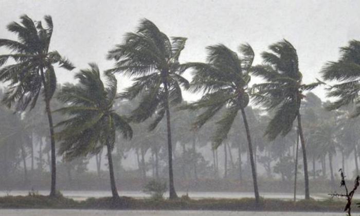 Telangana And AP Will Have Plentiful Of Rains This Year: IMD Forecast-Latest News English-Telugu Tollywood Photo Image-TeluguStop.com