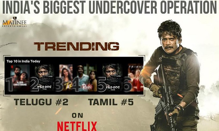Nagarjuna's 'wild Dog' Trending In No 1 Position On Netflix-TeluguStop.com