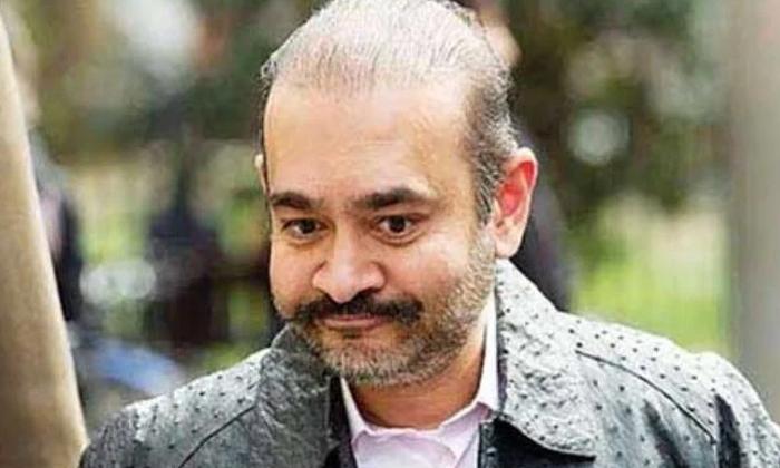 The British Government Has Taken A Key Decision In The Case Of Neerav Modi-నీరవ్ మోదీ విషయంలో కీలక నిర్ణయం తీసుకున్న బ్రిటన్ ప్రభుత్వం.. -Breaking/Featured News Slide-Telugu Tollywood Photo Image-TeluguStop.com