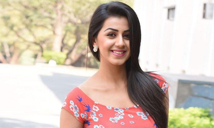 Actress Nikki Galrani Files Financial Fraud Complaint-హోటల్ వ్యాపారంలో 50 లక్షలు పోగొట్టుకున్న సౌత్ హీరోయిన్-Latest News - Telugu-Telugu Tollywood Photo Image-TeluguStop.com