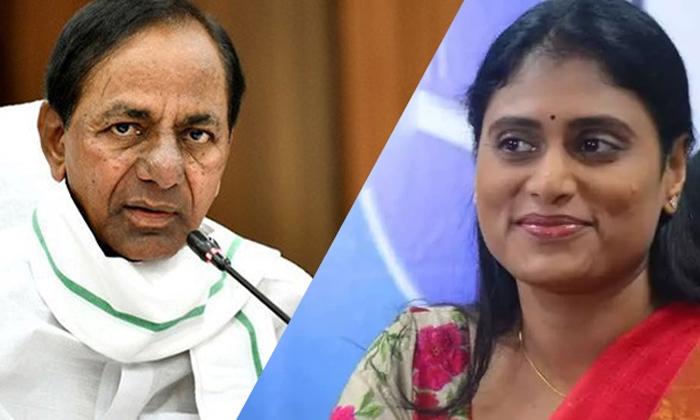 Telangana Political Partys Not Respond On Ys Sharmila Comments-షర్మిల పార్టీని వారెందుకు పట్టించుకోవడం లేదు -Political-Telugu Tollywood Photo Image-TeluguStop.com