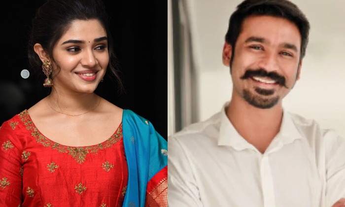 Telugu Dhanush Movie, Krithi Shetty, Shyam Singaroy Movie, South Cinema, Tollywood, Uppena Movie-Movie