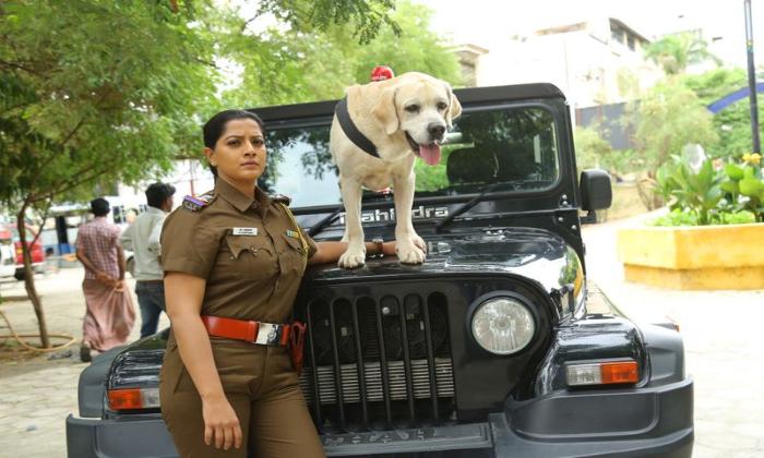 Varalaxmi Sarathkumar Play Police Officer Role In Chasing-పోలీస్ ఆఫీసర్ గా డ్రగ్స్ మాఫియాని చేజింగ్ చేస్తున్న వరలక్ష్మి-Latest News - Telugu-Telugu Tollywood Photo Image-TeluguStop.com