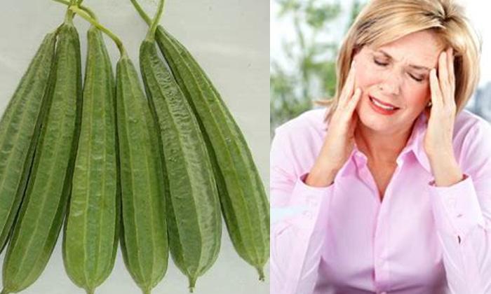 Health Benefits Of Ridge Gourd Summer Latest News Ridge Gourd-TeluguStop.com