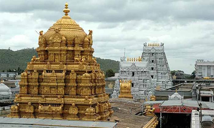 Secrets Of Thirumala Srivari Statue-తిరుమల శ్రీవారి విగ్రహ రహస్యాలు ఏమిటో మీకు తెలుసా..-Latest News - Telugu-Telugu Tollywood Photo Image-TeluguStop.com