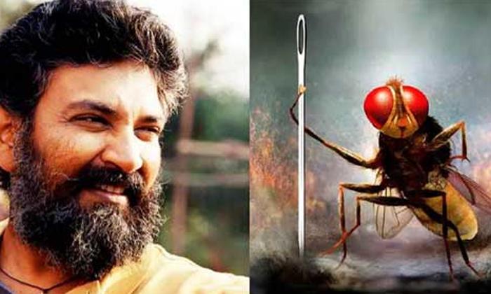 Tollywood Hit Movies With Animals And Birds As Lead Names-పక్షులు, జంతువులు కీలక పాత్ర లో నటించి హిట్ కొట్టిన సినిమాలు-Movie-Telugu Tollywood Photo Image-TeluguStop.com