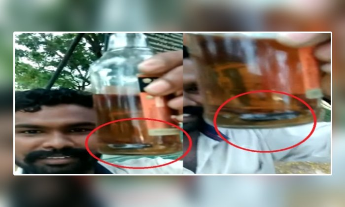 Snake Found In Liquor Bottle In Tamilnadu-వామ్మో : మద్యం బాటిల్ లో పాముపిల్ల..చివరికి..-General-Telugu-Telugu Tollywood Photo Image-TeluguStop.com