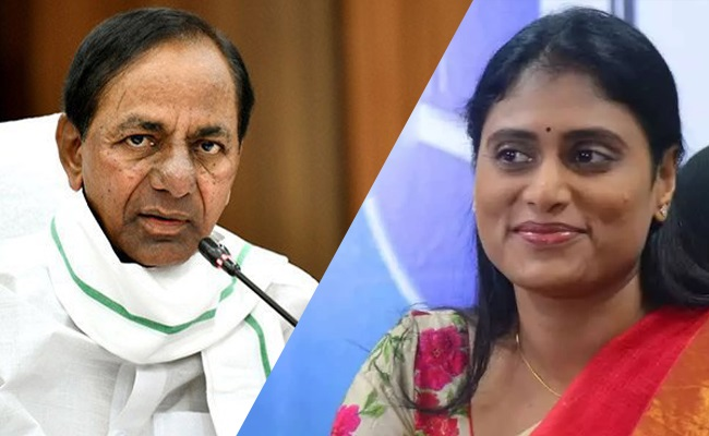 Ys Sharmila Serious Comments On Kcr-కేసీఆర్ పై సీరియస్ వ్యాఖ్యలు చేసిన షర్మిల..-Political-Telugu Tollywood Photo Image-TeluguStop.com