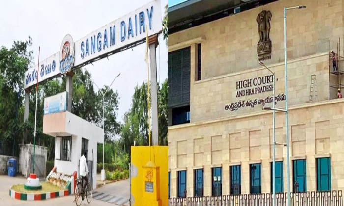 Ap High Court Suspends Ap Govt Go On Sangam Dairy Ownership-TeluguStop.com