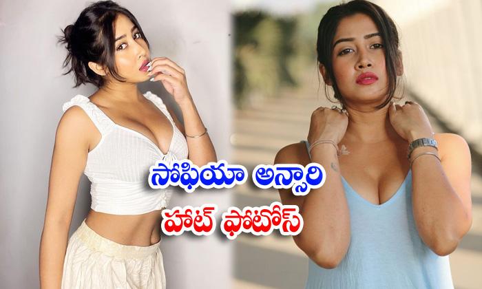 Bollywood hot model sofia ansari hot trendy clicks-సోఫియా అన్సారి హాట్ ఫొటోస్
