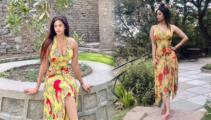 Indian Actress Meera Chopra Beautiful Clicks-telugu Actress Hot Photos Indian Actress Meera Chopra Beautiful Clicks - Te High Resolution Photo