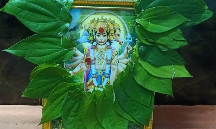Amazing Benefits Of Worshiping Anjaneya On Amavasya-ఆంజనేయుడిని అమావాస్య రోజు పూజిస్తే ఎలాంటి ఫలితాలు కలుగుతాయో తెలుసా-Latest News - Telugu-Telugu Tollywood Photo Image-TeluguStop.com