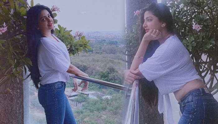 South Indian Actress Poonam Kaur Mind Blowing Pictures-telugu Actress Hot Photos South Indian Actress Poonam Kaur Mind B High Resolution Photo