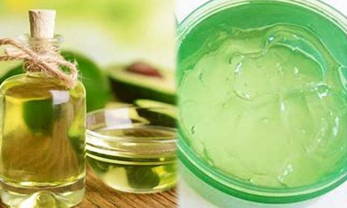 Benefits Of Avocado Oil Avocado Oil For Skin Skin Care-చర్మాన్ని యవ్వనంగా మార్చే అవకాడో ఆయిల్..ఎలా వాడాలంటే-Latest News - Telugu-Telugu Tollywood Photo Image-TeluguStop.com