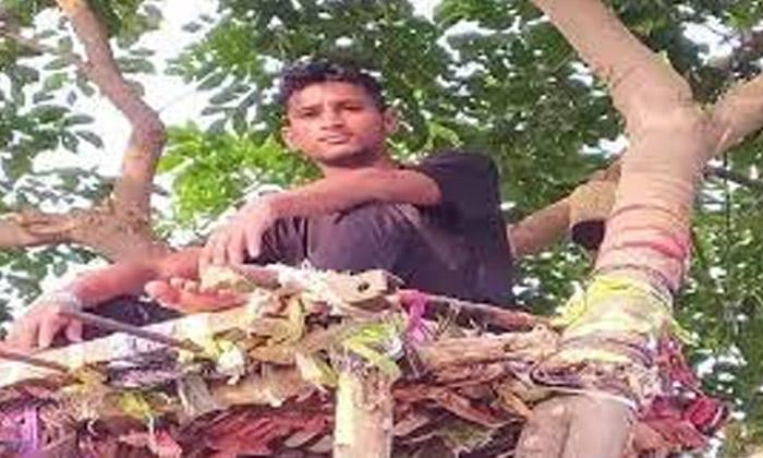 Viral The Boys Idea Of Infection Is Super-వైరల్ : కరోనా సోకడంతో ఆ అబ్బాయి చేసిన ఆలోచన సూపర్..-General-Telugu-Telugu Tollywood Photo Image-TeluguStop.com
