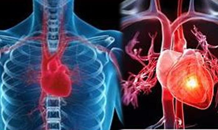 Health Benefits Of Black Beans Black Beans Health Care Health Tips-TeluguStop.com